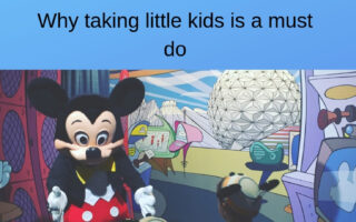 Taking small children to Disney can be hard, but don't miss out on all of the fun you can have with your little kids. Here is why you need to take them.
